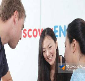 trường discover english
