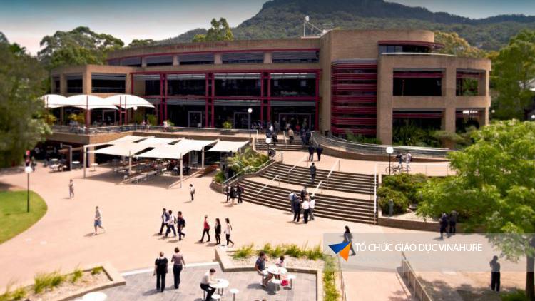 Học bổng Đại học Wollongong