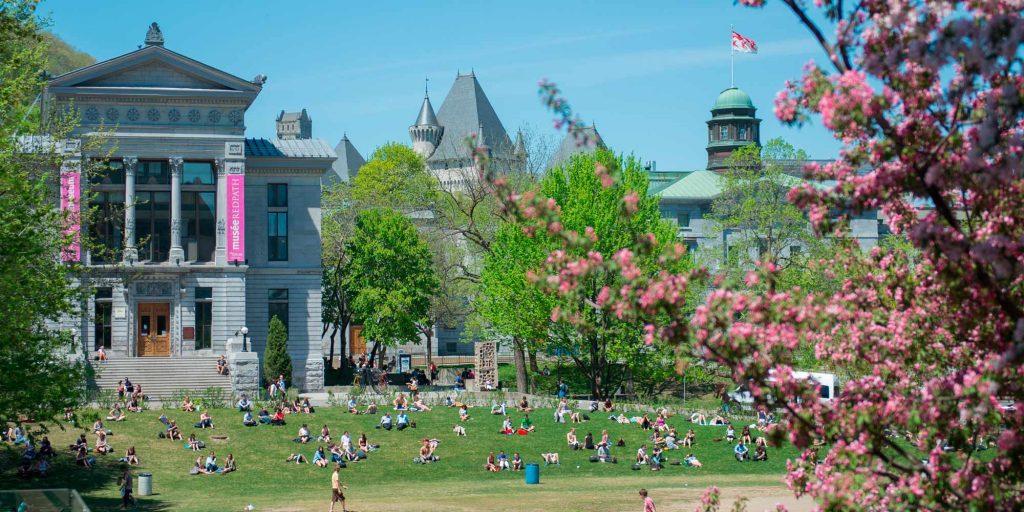 Trường đại học Montreal Canada